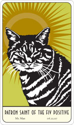 Saint Mr. Man:  Patron Saint of the FIV Positive card.