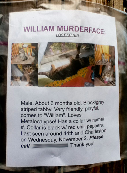 A lost cat poster for William Murderface