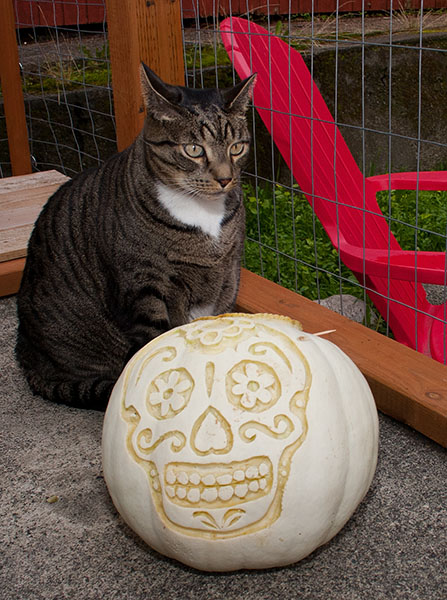 Oliver with a white pumpkin that has a skull carved on it.