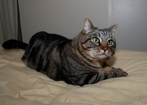 Otis looking very concerned