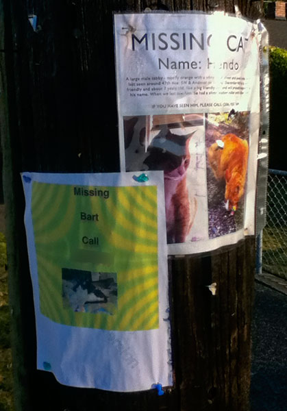 Lost Cat Posters for Hendo and Bart
