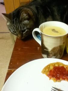 Otis sneaking toward breakfast plate.