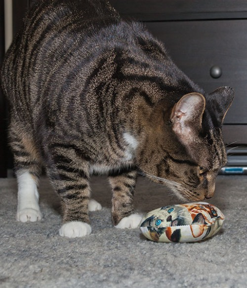 15- Henry with toys