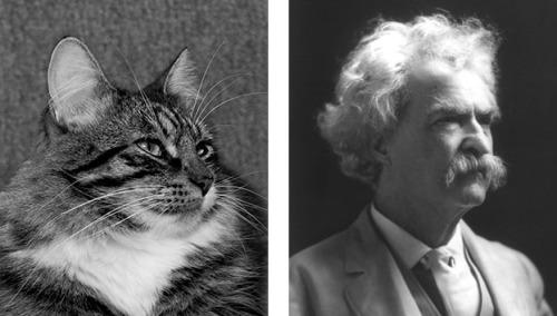 Thomas Twain