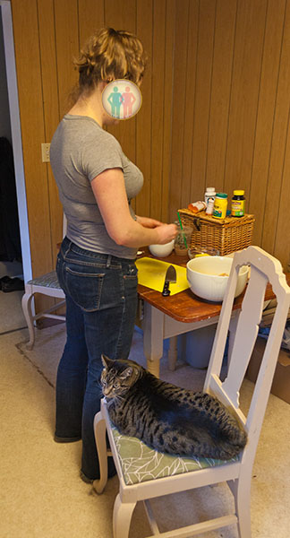 Cooking with Kitties 1