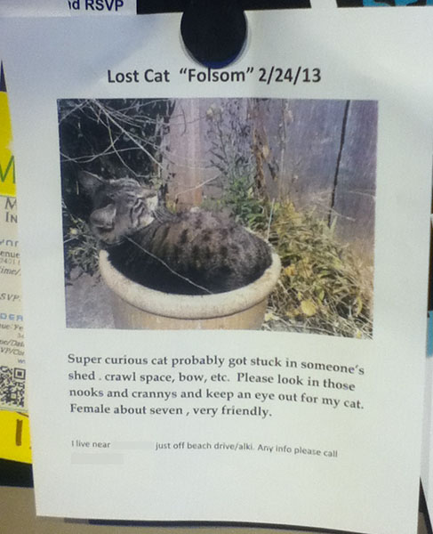 Lost Cat Poster- Folsom-1 copy