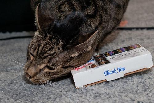 Oliver rubbing box
