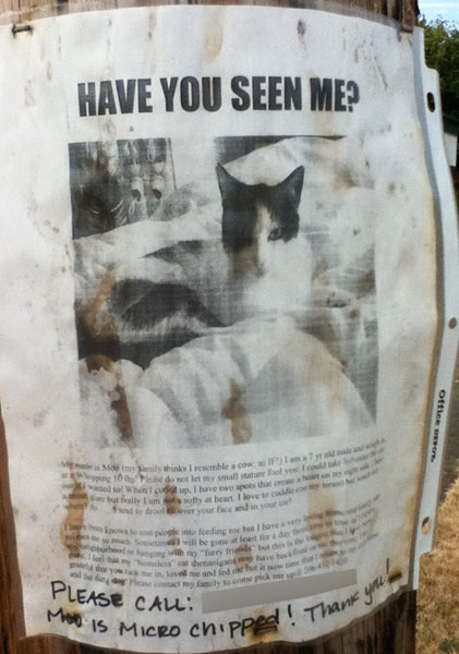 Lost Cat Poster- Moo-1