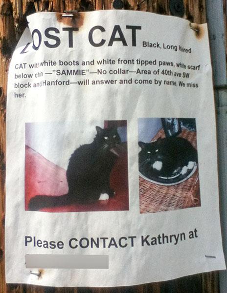 Lost Cat Poster- Sammie