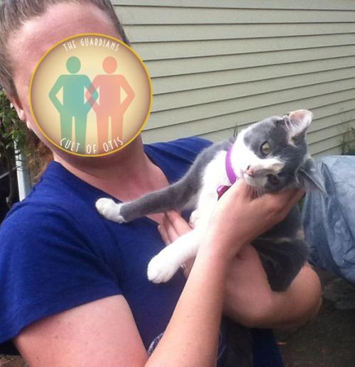 Limbo Kitten 091513-2