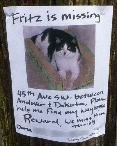 Lost Cat Poster- Fritz-1
