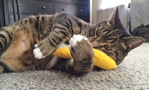 Oliver with banana 2