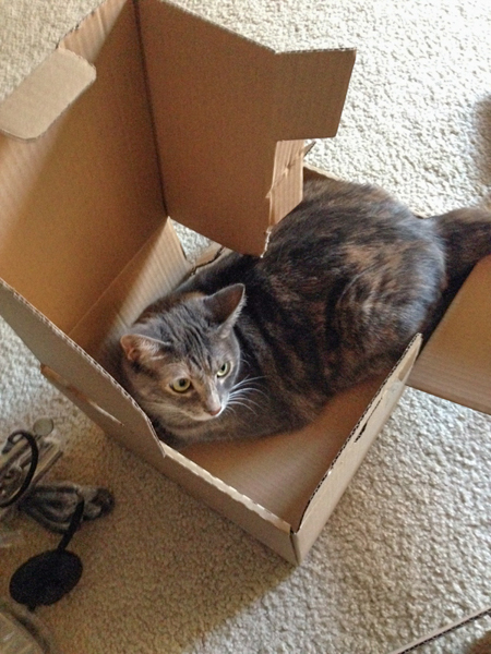 LUNA in box 2