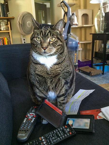 Oliver looking impatient
